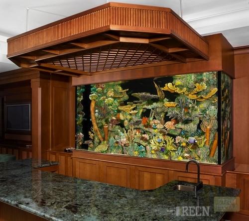 Встроенные аквариумы своими руками