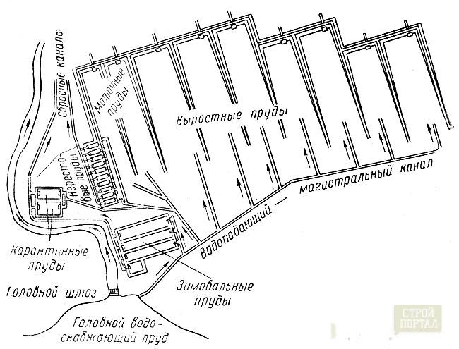 схема прудов