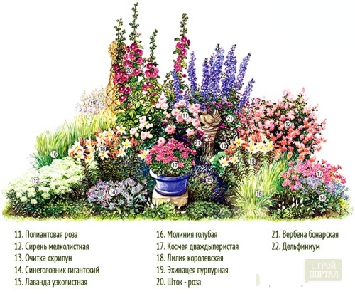 Схема рассадки цветов