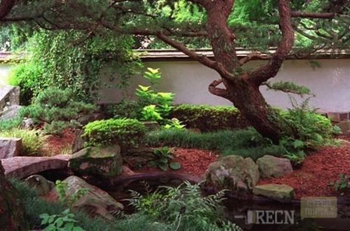 Растения для японского сада, Японский сад Портленда, сад