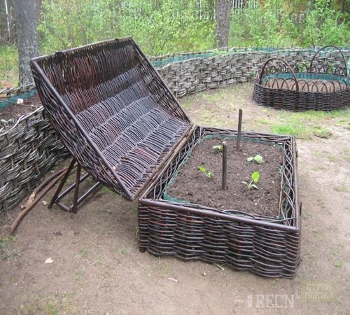 Выращивание и уход за краснокочанной капусты 550