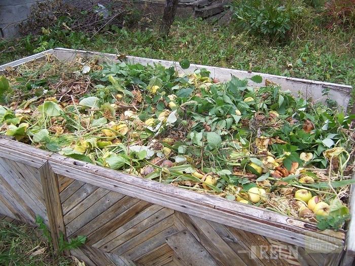 Осень своими руками грядки 178