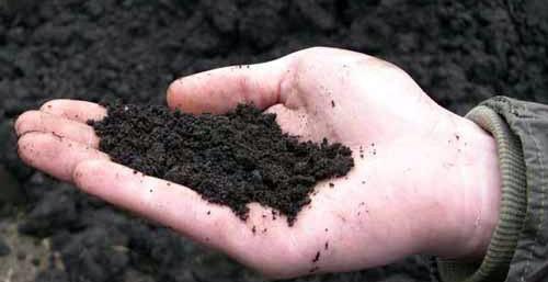 Виды удобрений: классификация, отличия, достоинства
