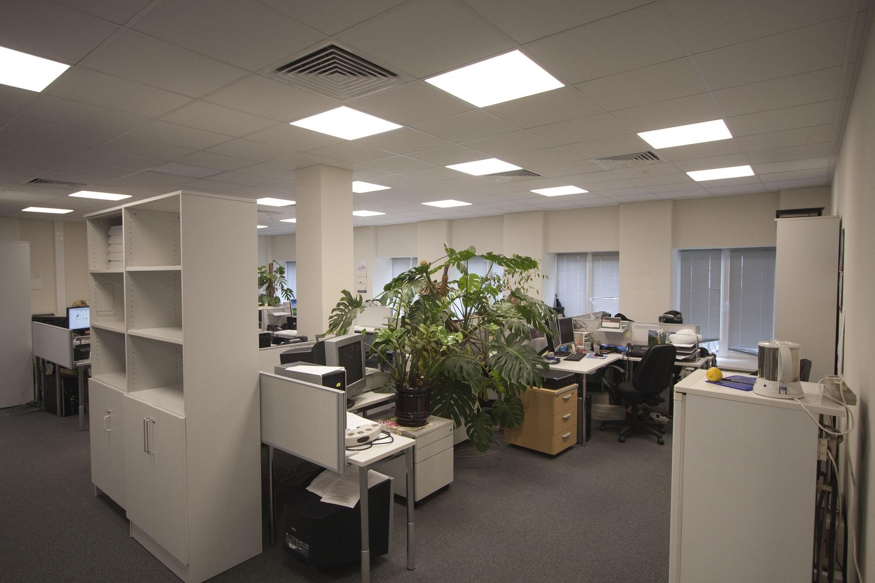 Офисное освещение прямоугольными светильниками
