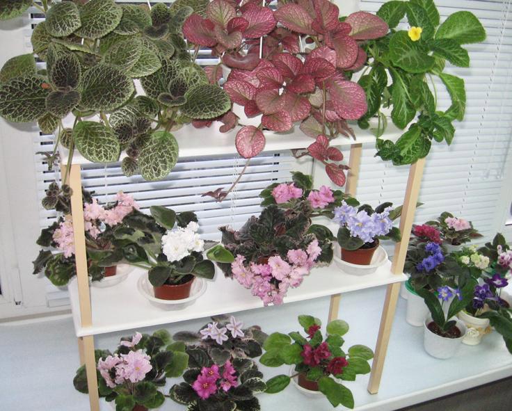 Полка на подоконник для цветов