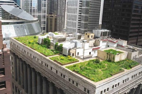 Urban Roof Gardens design Wallpapers 4