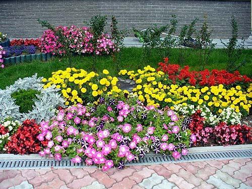 klumby-i-cvetniki-na-dache-01