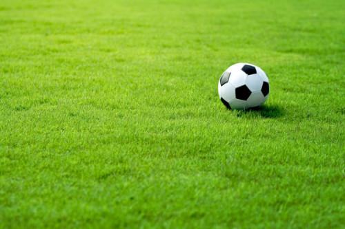 спортивный-газон