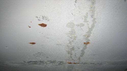 ceiling1561